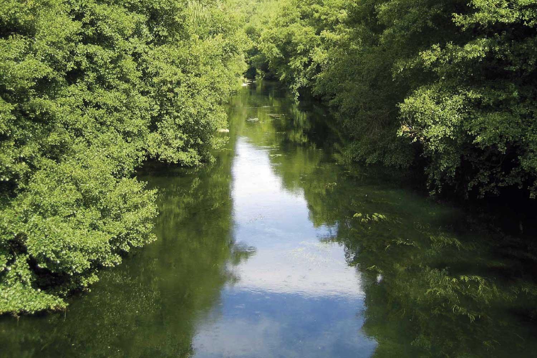 Rio Sil por Villadepalos