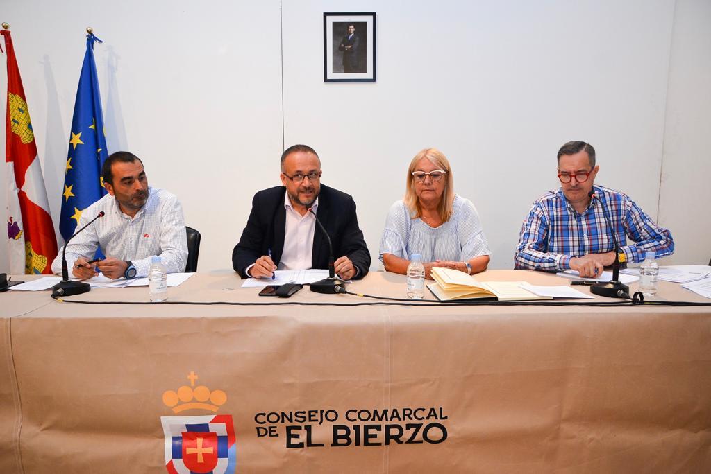 Pleno de organización Consejo Comarcal