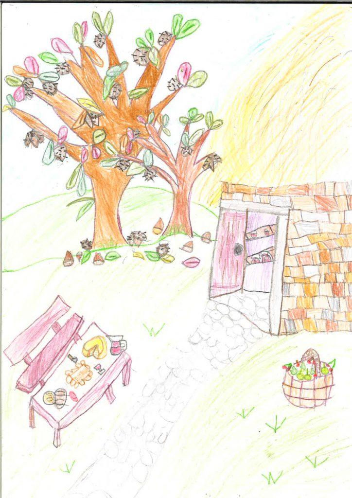Dibujo del concurso #ElBierzonoespera