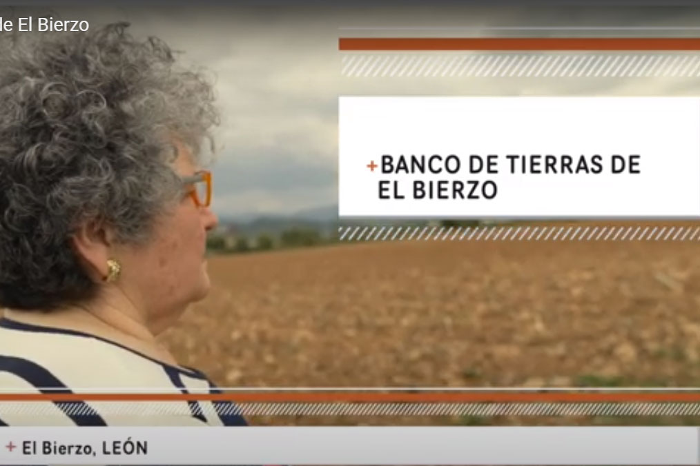 El Banco de Tierras del Consejo elegido como modelo de recuperación del potencial agrícola